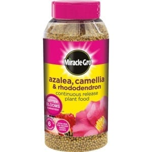 Miracle-Gro Azalea Camellia & Rhododendron Continuous Release Plant Food
