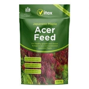 Acer Feed