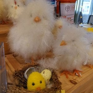 Easter Chicks in the Shop